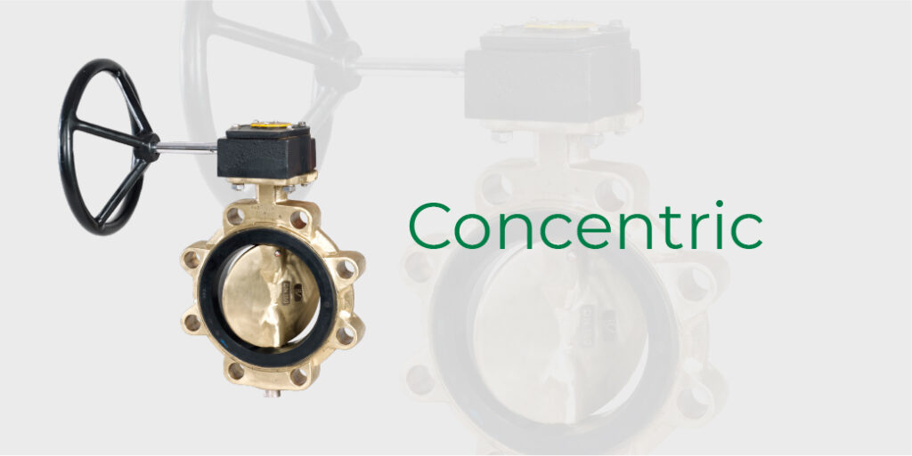 concentric butterfly valve. click to go to the frenstar concentric page